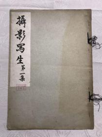 民國有正書局,攝影寫生第一集10幅,攝影者陳山山,心印摟