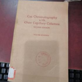 gas chromatography with glass capillary columns(P3595)