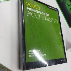 Voet'S Principles Of Biochemistry Global Edition 5th 原版 生物化学原理 基础生物化学 D.沃伊特(Donald Voet)