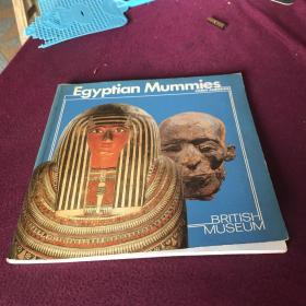 EGYPTIAN MUMMIES  CAROL ANDREWS