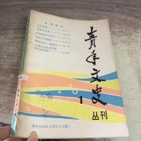 青年文史叢刊1
