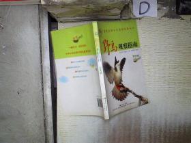 野鳥觀察指南 學生版