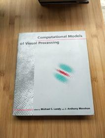 Computational  Models  of  Visual  Processing