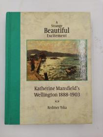 A Strange Beautiful Excitement: Katherine Mansfield's Wellington