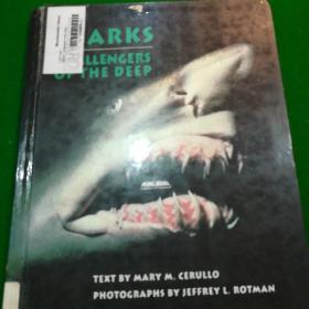 sharks challengers of the deep