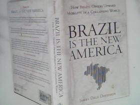 Brazil Is the New America  How Brazil Offers Upward Mobility in a Collapsing World