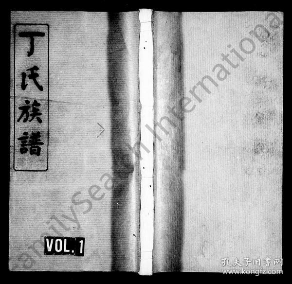 丁氏族谱 [14卷,首2卷] 复印件