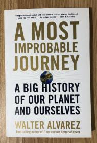 A Most Improbable Journey: A Big History of Our Planet and Ourselves 9780393355192