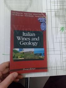 Italian Wines and Geology