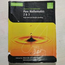 Pure Mathematics 2 and 3