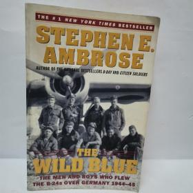 STEPHEN E.AMBROSE :THE WILD BLUE