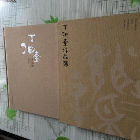 丁伯奎作品集(布面,精装,有外盒)