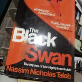The Black Swan:The Impact of the Highly Improbable