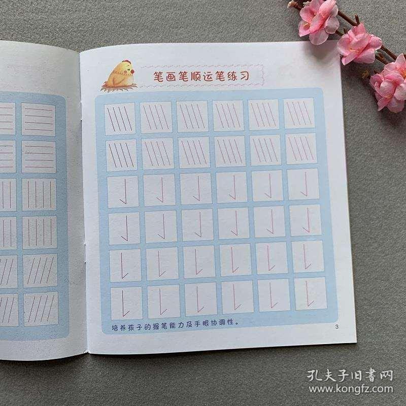 幼儿园笔画笔顺描红本中大班学前班汉字笔顺练字帖初学者临摹描红