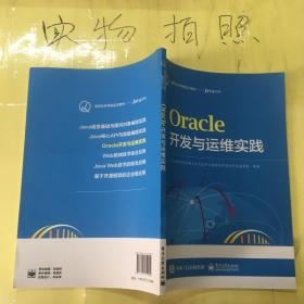 Oracle  开发与运维实践..