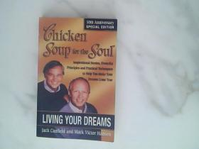 (心灵鸡汤(追梦篇))Chicken Soup for the Soul - Living Your Dreams