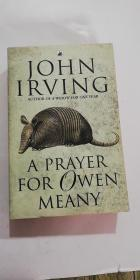 A Prayer for Owen Meany by John Irving 英文原版
