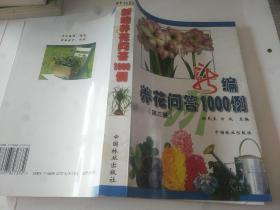 鏂扮紪鍏昏姳闂瓟1000渚嬶紙绗笁鐗堬級