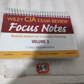 Wiley CIA Exam Review Focus Notes: Business Analysis and Information Technology, Volume 3