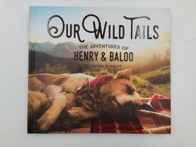 Our Wild Tails: The Adventures of Henry and Baloo 猫狗一家亲