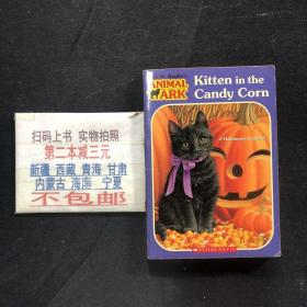 Kitten in the Candy Corn