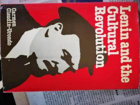 lenin and the cultural revolution