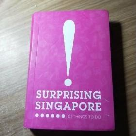 SURPRISING SIN GAPORE 101 THINGS TO DO
