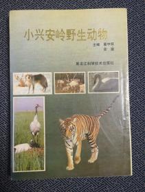 小興安嶺野生動物