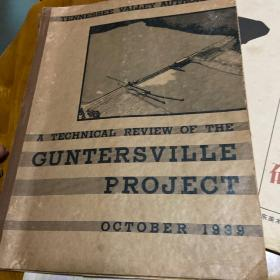 A TECHNICAL REVIEW OF THE GUNTERSVILLE PROJECT