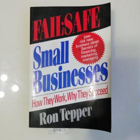 Fail-Safe Small Businesses:How They Work,Why They Succeed