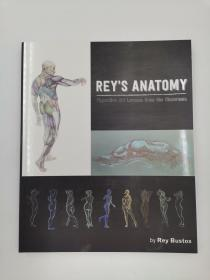 rey's anatomy figurative art lessons from the classroom