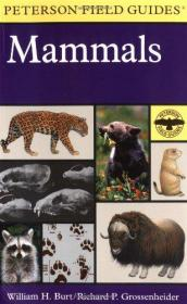 A Field Guide To Mammals
