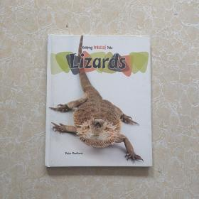 keeping unusual pets Lizards
