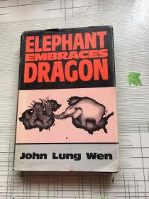 Elephant Embraces Dragon by John Lung Wen