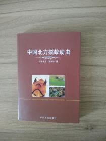 中國北方搖蚊幼蟲
