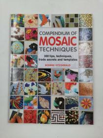 Compendium of Mosaic Techniques: 300 Tips, Techniques, Trade Secrets and Templates