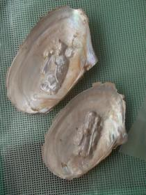 异形珍珠 自然贝壳 人工珍珠 人物【济公】【寿星】