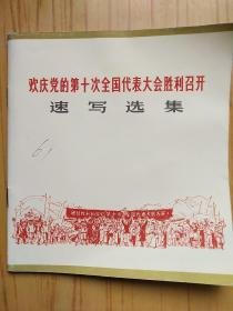 歡慶黨的第十次全國代表大會勝利召開 速寫選集