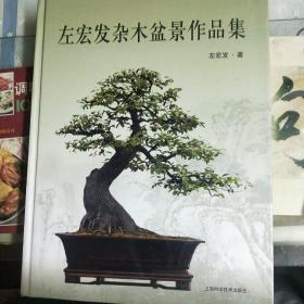 左宏發雜木盆景作品集(全新未翻閱精裝