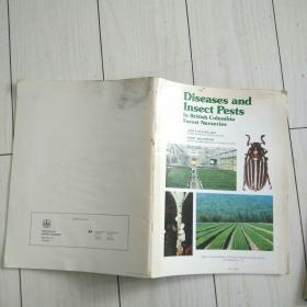 Diseases and Insect Pests  (英文版 病虫害