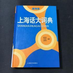 上海話大詞典