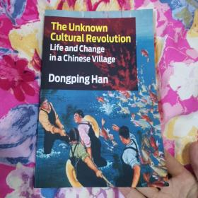 The Unknown Cultural Revolution:Life and Change in a Chinese Village