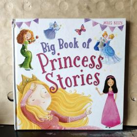 Big Book of Princess Stories(英文原版)