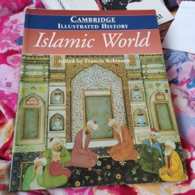 illustrated history Islamic world