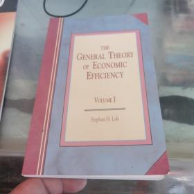 THE GENERAL THEORY OF ECONOMIC EFFICIENCY VOLUME 1 有个签名