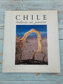 Chile todavia un paraiso 英/西对照