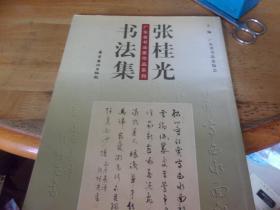 張桂光書法集