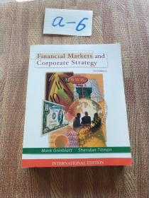 Financial Markets and Corporate Strategy 2nd Edition(平装)