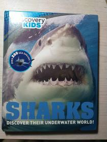 SHARKS DISCOVER THEIR UNDERWATER WORLD!