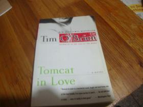 TOMCAT IN LOVE  Tlm o'Brien